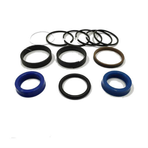 Set of seals for the plunger cylinder 160-50 / 28, 3 outlets, 054217001